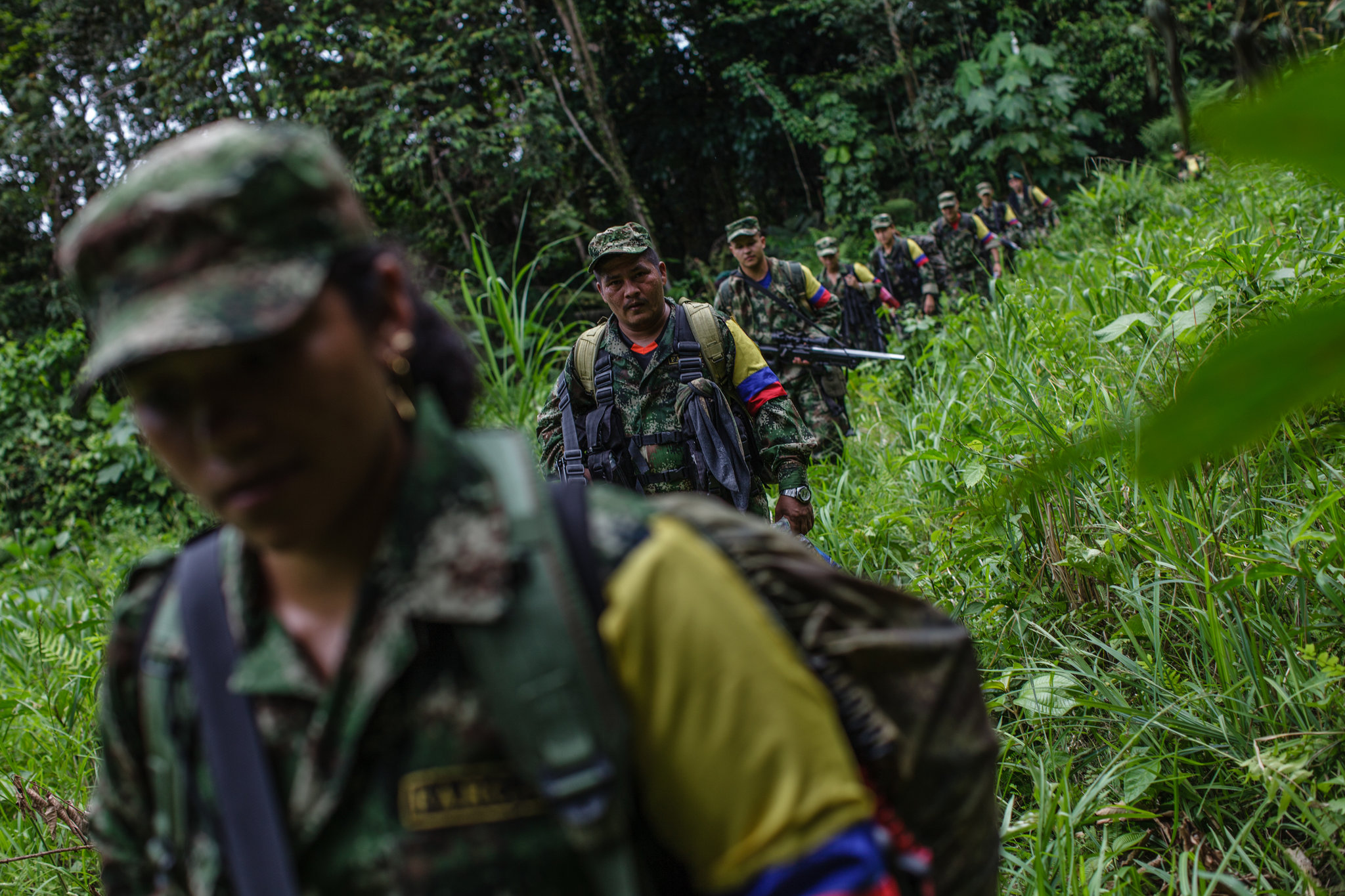 las fuerzas armadas revolucionarias de colombia history essay Los grupos guerrilleros mas importantes son las fuerzas armadas revolucionarias de colombia (farc) y el ejercito de liberacion nacional (eln) estan integrados por un numero aproximado de 11000 a 17000 combatientes permanentes organizados en mas de 100 grupos semiautonomous.