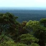 Foto Parques Nacionales de Paraguay