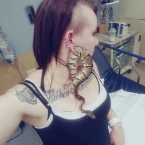 La serpiente Bart tuvo que ser removida con cirugía