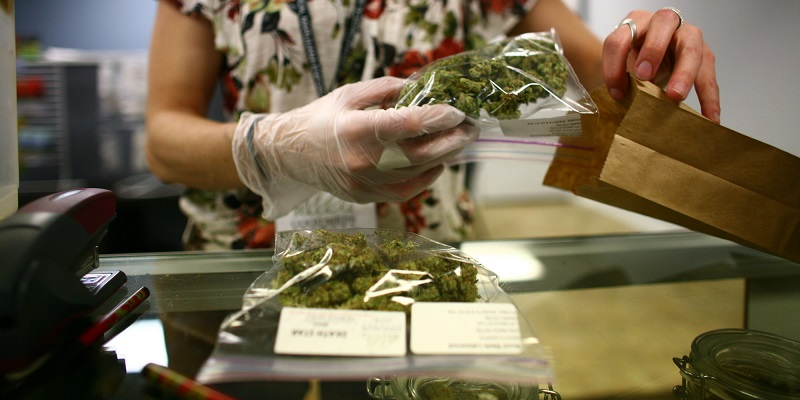 Aprobación de uso medicinal de cannabis abre esperanza a enfermos en México