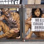 animales-salvajes-circos