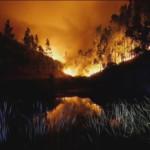 fuego portugal 3