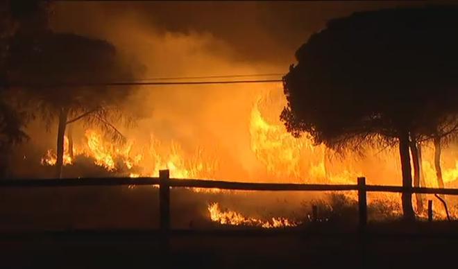 incendio parque Doñana