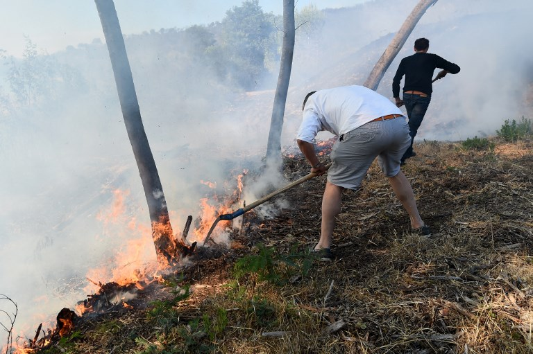 People try to extinguish a fire burning in Bormes-les-Mimosas on July 26, 2017. At least 10,000 people, including thousands of holidaymakers, were evacuated overnight after a new wildfire broke out in southern France, which was already battling massive blazes, authorities said on July 26. / AFP PHOTO / Anne-Christine POUJOULAT