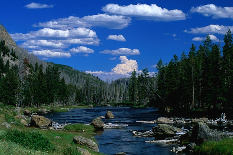 MADISON-RIVER-YELLOWSTONE