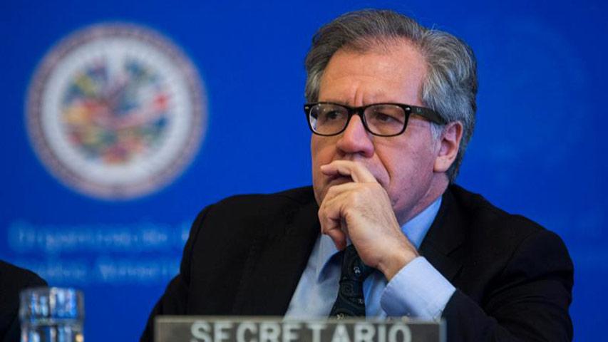 Almagro: OEA vigilará las presidenciales en Venezuela