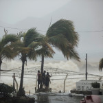 People stand next tp swaying palm trees following the passing of Tropical Storm Lidia in Los Cabos