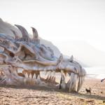 esqueleto de dragon