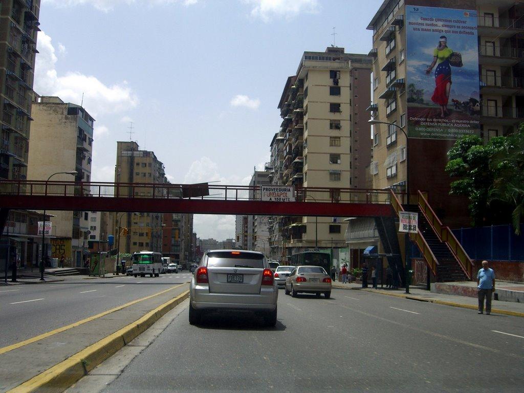 Foto cortesía de La Patilla