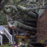 A tree that fell on a house, killing two people, is seen during Hurricane Florence in Wilmington, North Carolina on September 14, 2018. A mother and her infant were killed when a tree fell on their house in Wilmington, North Carolina, the first reported fatalities from Hurricane Florence, police said Friday. Wilmington police tweeted that the father was transported to the hospital with unspecified injuries. Hurricane Florence made landfall near Wilmington on Friday morning, battering the coastal city with strong winds and torrential rain.  / AFP PHOTO / ANDREW CABALLERO-REYNOLDS
