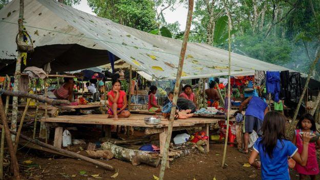"""Pueblos indígenas colombianos obligados a abandonar sus hogares por la """"guerra del narcotráfico"""""""